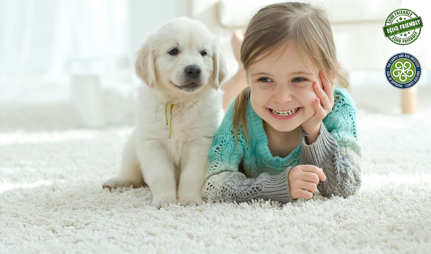 Echo carpet cleaning services