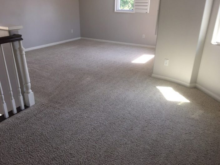 Commercial carpet cleaning irvine das