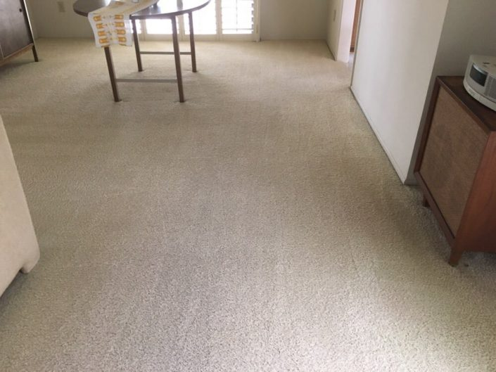 carpet cleaners Irvine - Echo