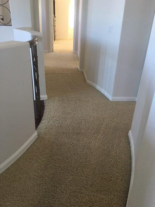 Residential carpet cleaning irvine 1